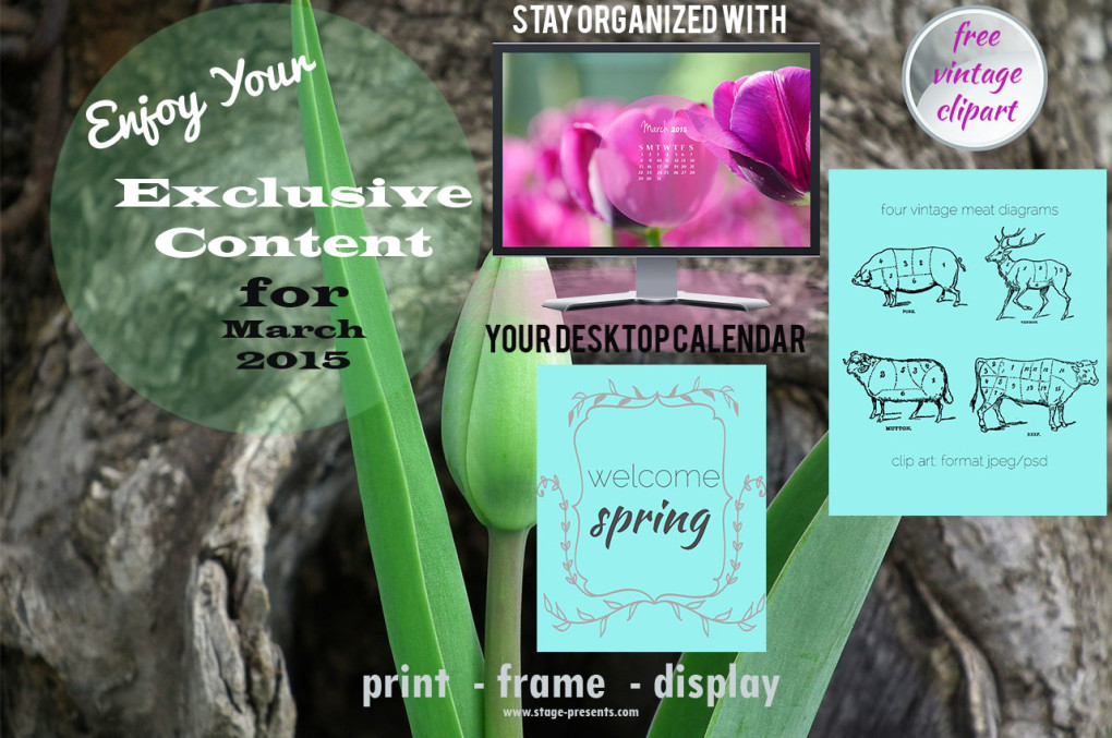 March Exclusive Content - Free Printables - Meat Cuts - Vintage Clipart