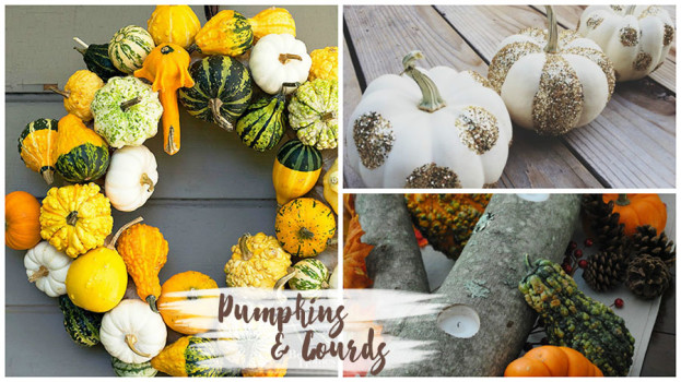 Decorating with Natural Elements - Pumpkins Gourds