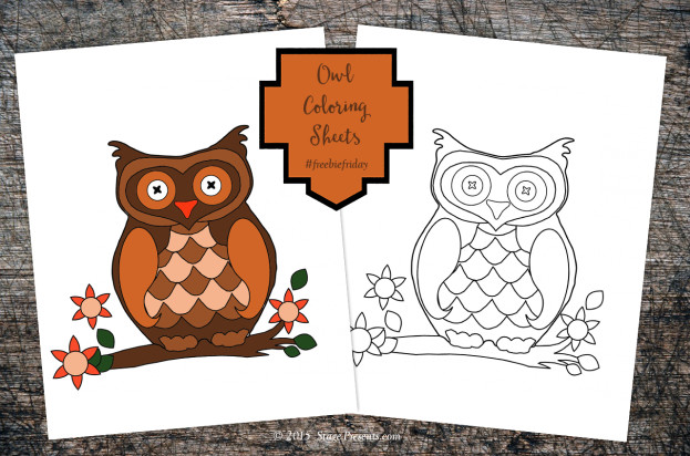 Three... Two... One... A Friday Series - Freebie Friday Owl Coloring Sheet - stage-presents.com