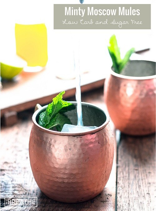 Low Carb and Sugar Free Moscow Mule